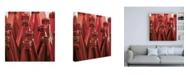 """Trademark Global Roderick Stevens Red Ring Toss Canvas Art - 19.5"""" x 26"""""""