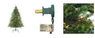 Northlight 6.5' Pre-Lit Hunter Fir Full Artificial Christmas Tree - Clear Lights