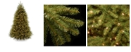 National Tree Company National Tree 6' Dunhill Fir Tree with 600 Clear Lights