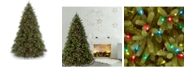 """National Tree Company National Tree 7 .5' """"Feel Real"""" Jersey Fraser Fir Hinged Tree with 1250 Multi Lights"""