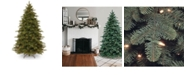 """National Tree Company National Tree 7 .5' """"Feel Real"""" Mountain Noble Blue Spruce Hinged Tree with 750 Clear Lights"""