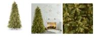 "National Tree Company National Tree 6 .5' ""Feel Real"" Tiffany Fir Slim Hinged Tree with 500 Clear Lights"