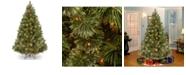 National Tree Company National Tree 7 .5' Wispy Willow Grande Medium Hinged Tree with 750 Clear Lights