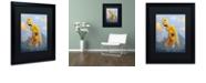 "Trademark Global Craig Snodgrass 'In The Clouds' Matted Framed Art, 16"" x 20"""