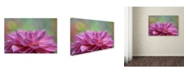 "Trademark Global Cora Niele 'Dahlia Petals' Canvas Art - 32"" x 22"" x 2"""