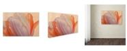 "Trademark Global Cora Niele 'Orange Glowing Tulip' Canvas Art - 24"" x 16"" x 2"""