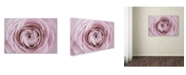 "Trademark Global Cora Niele 'Persian Buttercup' Canvas Art - 47"" x 30"" x 2"""
