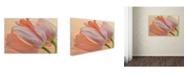"Trademark Global Cora Niele 'Two Orange Tulips' Canvas Art - 32"" x 22"" x 2"""