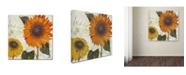 "Trademark Global Color Bakery 'Sundresses II' Canvas Art - 14"" x 2"" x 14"""