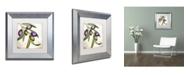 "Trademark Global Color Bakery 'Olive Branch I' Matted Framed Art - 11"" x 0.5"" x 11"""