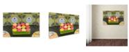 "Trademark Global Cora Niele 'Macarons In A Box' Canvas Art - 47"" x 30"" x 2"""