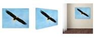 "Trademark Global Jai Johnson 'By His Grace Bald Eagle' Canvas Art - 47"" x 35"" x 2"""