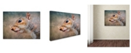 "Trademark Global Jai Johnson 'Gray Squirrel Portrait' Canvas Art - 24"" x 18"" x 2"""