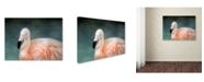 "Trademark Global Jai Johnson 'Pink flamingo 3' Canvas Art - 24"" x 18"" x 2"""