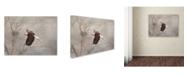"Trademark Global Jai Johnson 'Starting Over Bald Eagle' Canvas Art - 32"" x 24"" x 2"""