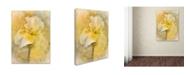 "Trademark Global Jai Johnson 'Splash Of Spring' Canvas Art - 19"" x 14"" x 2"""