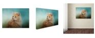 "Trademark Global Jai Johnson 'Over Her Shoulder' Canvas Art - 32"" x 24"" x 2"""