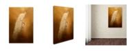 "Trademark Global Jai Johnson 'Elegance In Gold' Canvas Art - 32"" x 22"" x 2"""