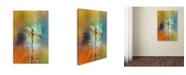 "Trademark Global Jai Johnson 'Many Colors 2' Canvas Art - 32"" x 22"" x 2"""