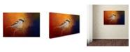 "Trademark Global Jai Johnson 'Autumn Sparrow' Canvas Art - 24"" x 16"" x 2"""