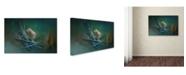 """Trademark Global Jai Johnson 'A Little Brown Bird On A Little Blue Wreath' Canvas Art - 24"""" x 16"""" x 2"""""""