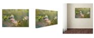"Trademark Global Jai Johnson 'Goldfinch In The Garden' Canvas Art - 19"" x 12"" x 2"""