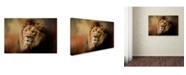 "Trademark Global Jai Johnson 'Heat Wave' Canvas Art - 32"" x 22"" x 2"""