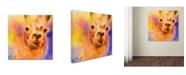 "Trademark Global Jai Johnson 'Jazzy Llama' Canvas Art - 35"" x 35"" x 2"""