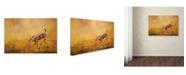 "Trademark Global Jai Johnson 'Romping In The Sunflower Field' Canvas Art - 47"" x 30"" x 2"""