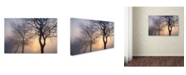 "Trademark Global Cora Niele 'Hazy Sunrise With Tree Tree Silhouettes' Canvas Art - 47"" x 30"" x 2"""