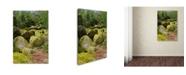 "Trademark Global Cora Niele 'The Chaos Of Huelgoat Ii' Canvas Art - 19"" x 12"" x 2"""