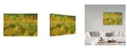 "Trademark Global Cora Niele 'Leaves Are Falling' Canvas Art - 19"" x 12"" x 2"""
