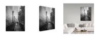 "Trademark Global David Senechal Photography 'Spring Snow Path' Canvas Art - 14"" x 2"" x 19"""