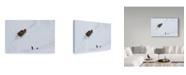 """Trademark Global Cristian Lee 'Lunca Ponorului' Canvas Art - 19"""" x 2"""" x 12"""""""