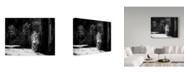 "Trademark Global David Williams 'Dark Side' Canvas Art - 19"" x 2"" x 14"""