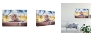 "Trademark Global Daniel Villalobos 'Cat On Wall' Canvas Art - 32"" x 2"" x 22"""