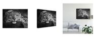 "Trademark Global David Williams 'Laying Snow Leopard' Canvas Art - 32"" x 2"" x 24"""