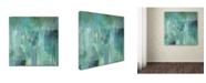 "Trademark Global Color Bakery 'Aqua Circumstance II' Canvas Art - 14"" x 14"" x 2"""