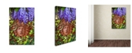 "Trademark Global Tina Lavoie 'Secret Garden' Canvas Art - 24"" x 16"" x 2"""