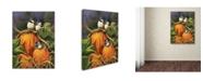 """Trademark Global Wanda Mumm 'Chickadees And Pumpkins' Canvas Art - 32"""" x 24"""" x 2"""""""