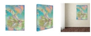 "Trademark Global MusicDreamerArt 'Pastel Warrior' Canvas Art - 19"" x 14"" x 2"""