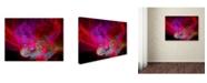 """Trademark Global MusicDreamerArt 'Dragonfire' Canvas Art - 19"""" x 14"""" x 2"""""""