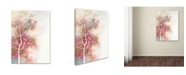 """Trademark Global The Tangled Peacock 'Summer Blossom' Canvas Art - 19"""" x 14"""" x 2"""""""