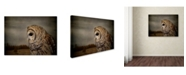 "Trademark Global Jai Johnson 'The Surveyor' Canvas Art - 24"" x 18"" x 2"""