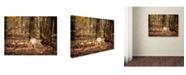"Trademark Global Jai Johnson 'Wild Turkey In The Woods' Canvas Art - 32"" x 24"" x 2"""