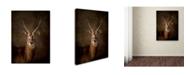 "Trademark Global Jai Johnson 'Waterbuck Antelope' Canvas Art - 19"" x 14"" x 2"""