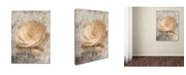 "Trademark Global Jai Johnson 'Vintage Rose 3' Canvas Art - 19"" x 14"" x 2"""