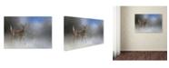 """Trademark Global Jai Johnson 'Step Out In Faith' Canvas Art - 32"""" x 22"""" x 2"""""""