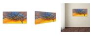 "Trademark Global Michelle Faber 'Sunset Tree' Canvas Art - 24"" x 12"" x 2"""