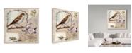 """Trademark Global Sher Sester 'Natural Bliss Birds Tan' Canvas Art - 24"""" x 24"""" x 2"""""""